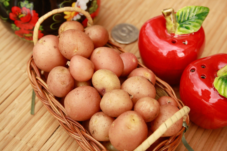 Геморрой лечение народными средствами картошкой — Сайт о геморрое