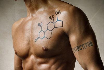 Как влияет тестостерон на набор мышечной массы