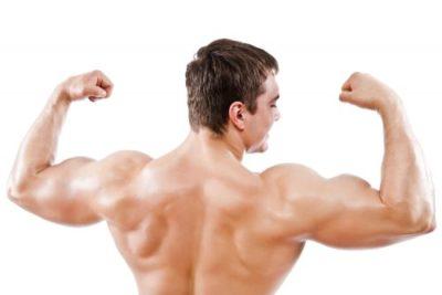 Пкт — восстановление после курса стероидов